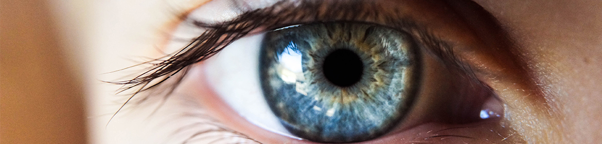 8 surprising facts about our eyes   Lenstore co uk