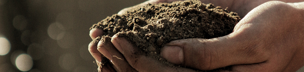 Person with handfuls of soil