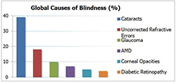 Global causes of blindness