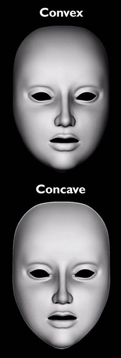 Concave convex optical illusion masks