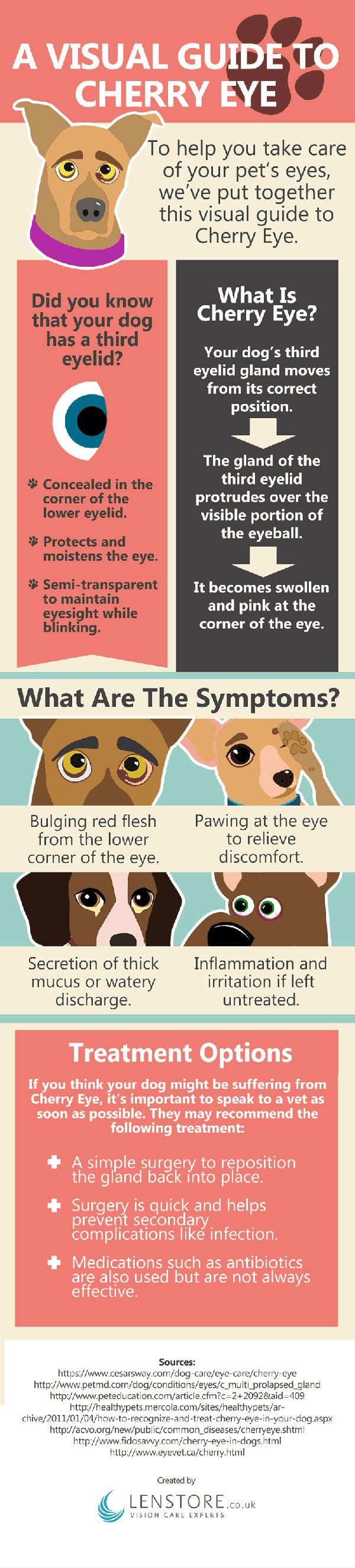 Cherry Eye In Dogs Massage
