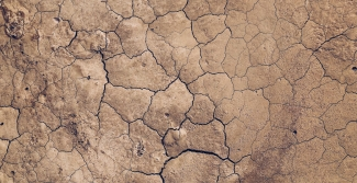 Image of dry ground