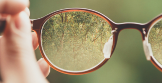 Forest through glasses