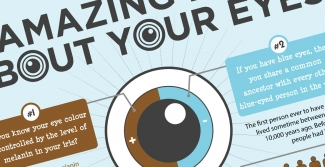 7 amazing eye facts lenstore co uk