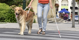 Blind woman crossing street with guide dog