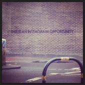 Instagram Opportunity Thumbnail