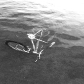Cycling in water Thumbnail